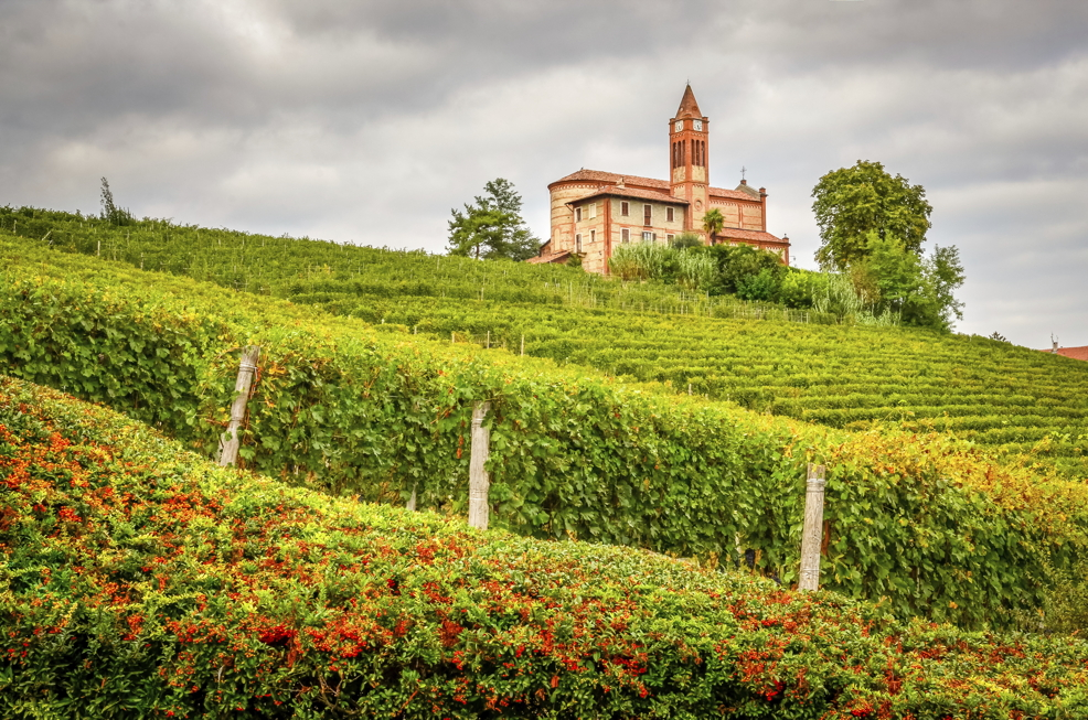 Landscape view of vineyards and old church in Piemont, Italy